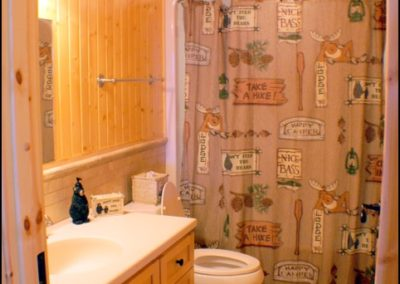 North Shore Log Home Bathroom